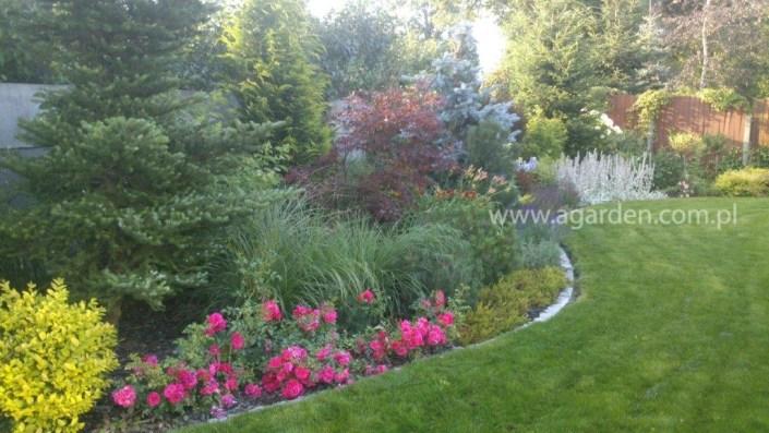 zakładanie ogrodów poznań