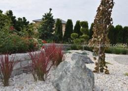 projektowanie ogrodów poznań