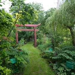 Physic garden-1