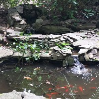 How to Repair a Pond Leak