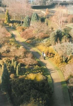New Winter Garden