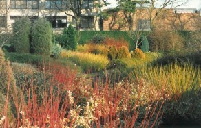 New Winter Garden, 1979