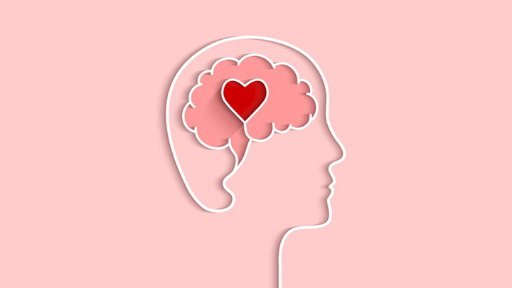 The Neuroscience of Love