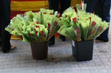 Sant Jordi al Grup Àgata
