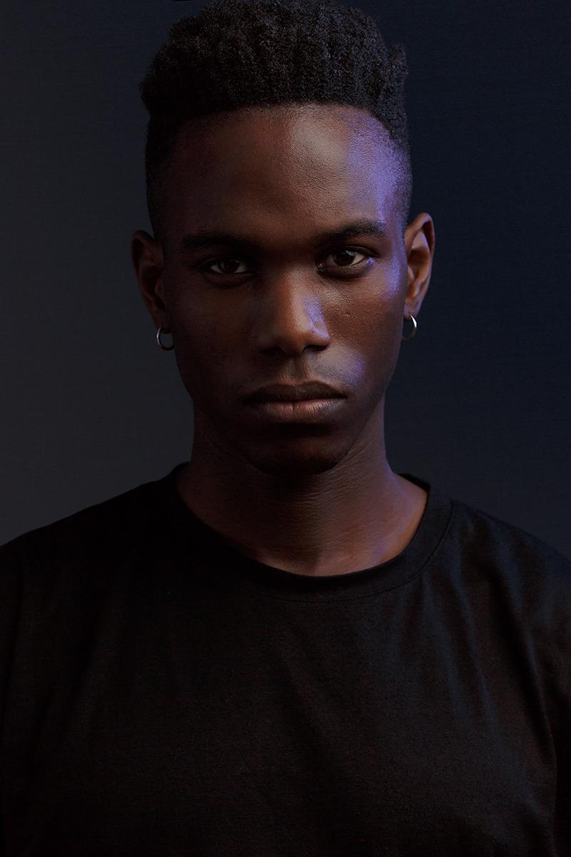David – D1 Models