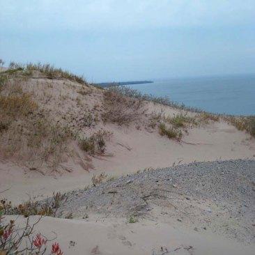Dunes-gravel-bed-large