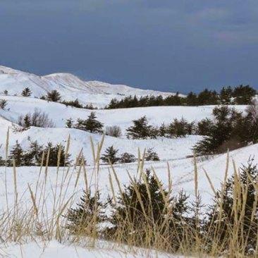Early-Winter-004-big