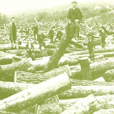 logging-postcard-2-big
