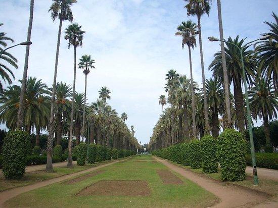 parc-de-la-ligue-arabe