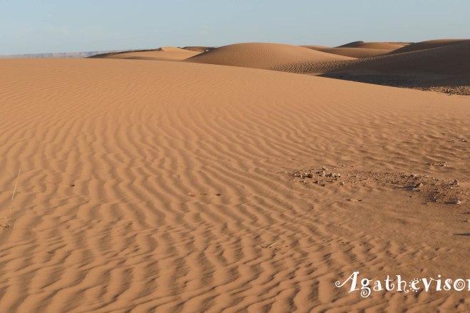 Désert du Sahara, Merzouga