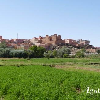 2019DE0615-Tinghir-Jardin et ruine Kasbah