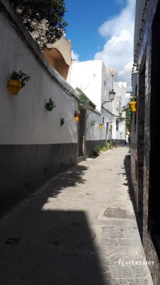 2019NM0536-Tetouan-Medina-Rue