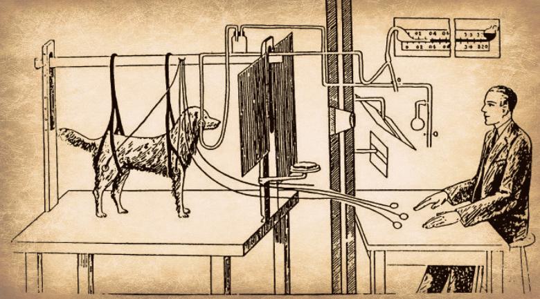https://i2.wp.com/agbeat.com/wp-content/uploads/2012/06/pavlov-experiment.jpg