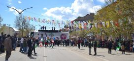HDP Nurhak ilçe merkezinde ve Barış mahallesinde seçim bürosu açtı