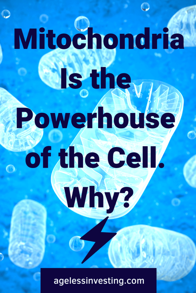 Mitochondria is the powerhouse of the cell. Why? Mitochondria function is far more than just energy production. Why are mitochondria the key to optimal health, energy, and longevity?