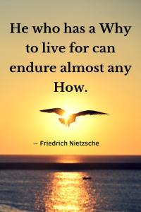 """A bird flying in the sunset over water, quote, """"He who has a Why to live for can endure almost any How."""" -Fredrich Nietsche"""
