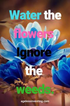 """Light blue flowers, headline """"Water the flowers, ignore the weeds."""" -agelessinvesting.com"""