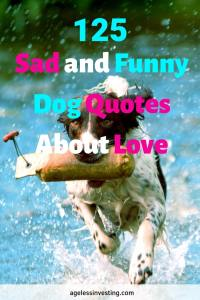 "A dog running in water with a log in its mouth, headline ""125 Sad and Funny Dog Quotes About Love"""