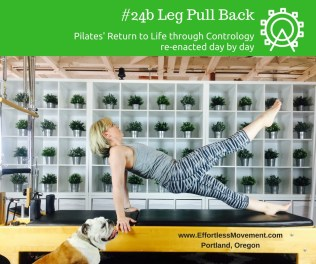 Leg Pull Back