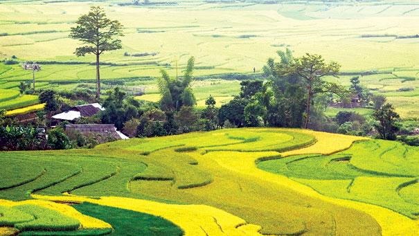 Trekking Sapa Tourisme responsable