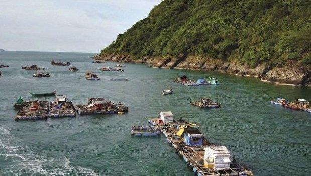 Ca Mau Incontournables du Vietnam