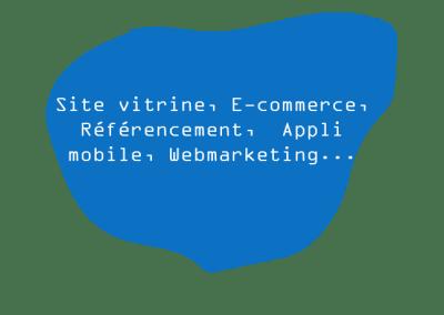 Online, votre projet : nos solutions