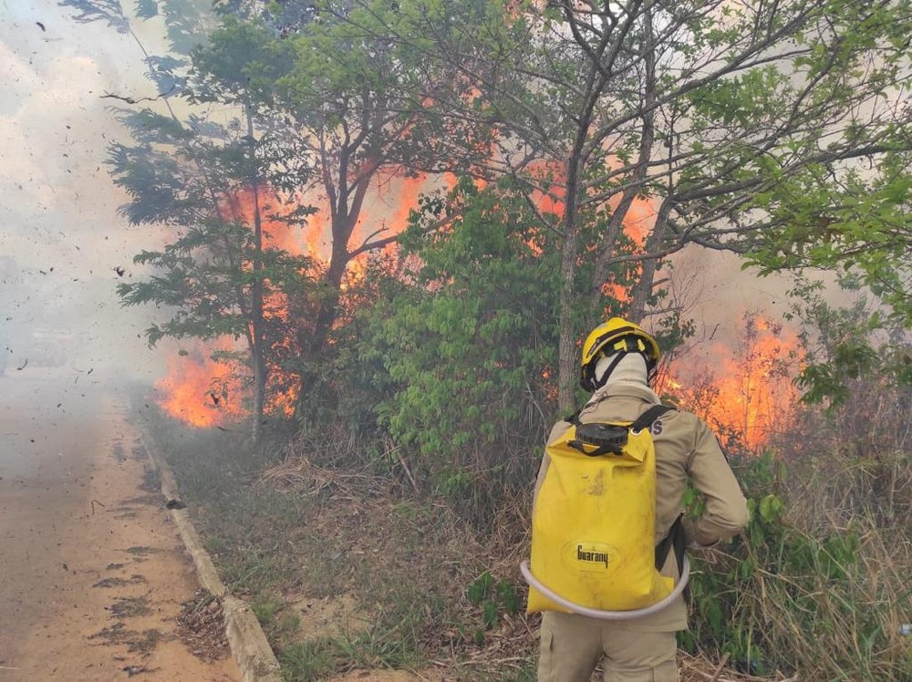 Acre registers more than 300 fires in the first week of October