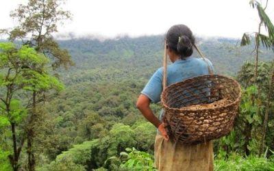 Asesinados dos indígenas de la comunidad AWA en Barbacoas Nariño