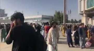 1 talibanes 6