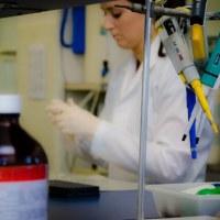 Coronavírus - desprezo da Ciência e Tecnologia pelo Governo Federal