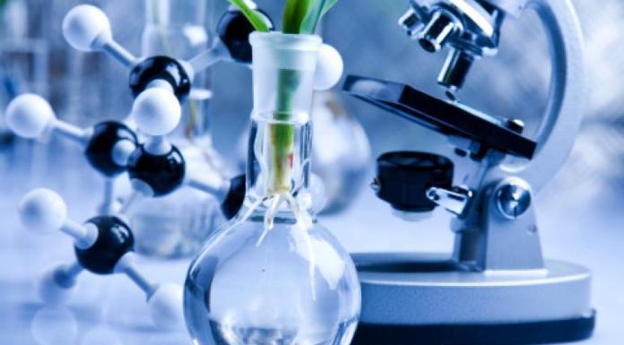 doutorado em biotecnologia unimontes