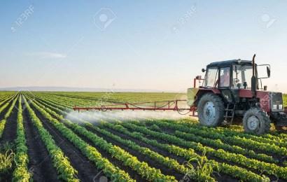 Productores del agro local fueron subsidiados por el Gobierno Nacional
