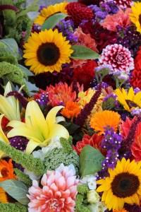 flowers 1323632 1920 2