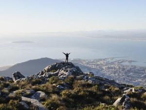 Top Fun Things To Do In Cape Town As Shared By Others Like Conde Nast