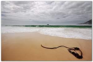 Cape Town Beach Simonstown