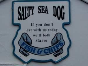 salty sea dog simonstown