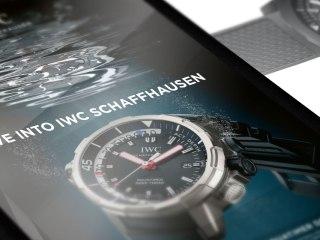 IWC Tri-fold Brochure