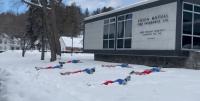 Union Mutual of Vermont Penguin Plunge