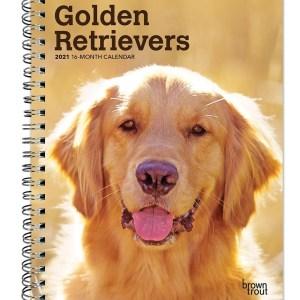 Golden Retriever Agenda 2021