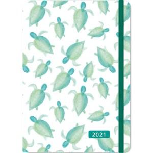 Turtles Agenda 2021