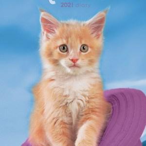 Kittens Agenda 2021