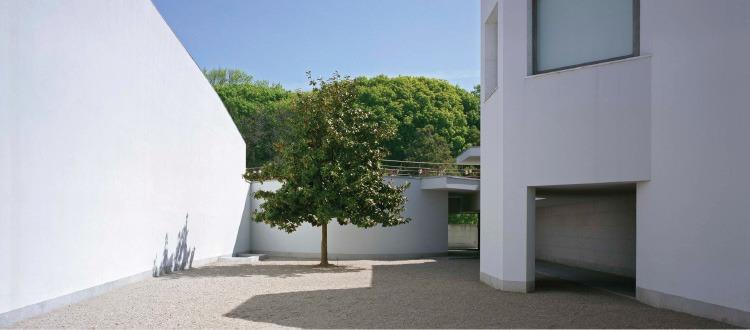 museu serralves jardim fundação