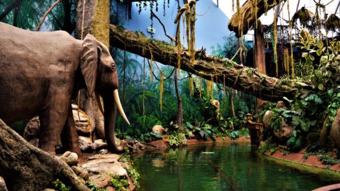 World of Discoveries Museu Interativo