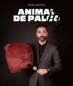 Animal de palco - Teatro sa da bandeira david cristina