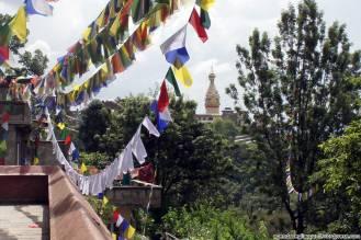 Il tempio delle scimmie con il suo incredibile stupa