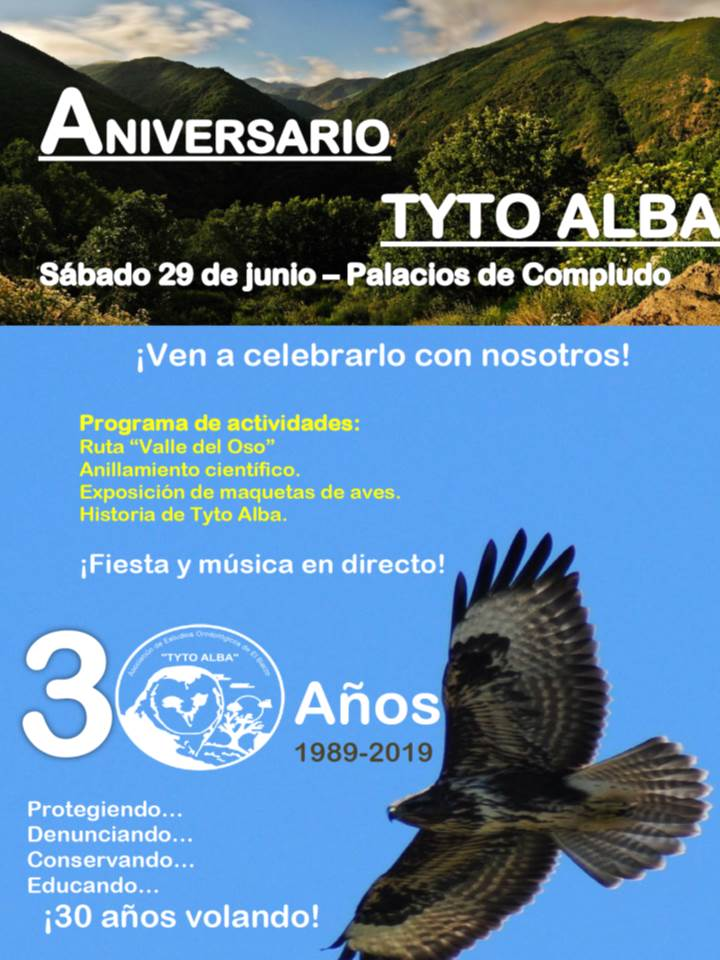 cartel fiesta 30 aiversario tyto alba el bierzo