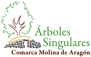 arboles_logo_rbg_logo