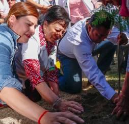 Voluntariado del IMSS en Hidalgo forestó áreas verdes de la Casa de la Tercera Edad4