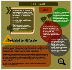 DeforestationInfographics