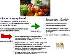 Fuente: Blog http://conflictosambientales.blogspot.com.ar Crédito: Malena Fusaro